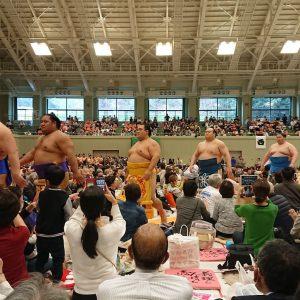 大相撲舞鶴場所